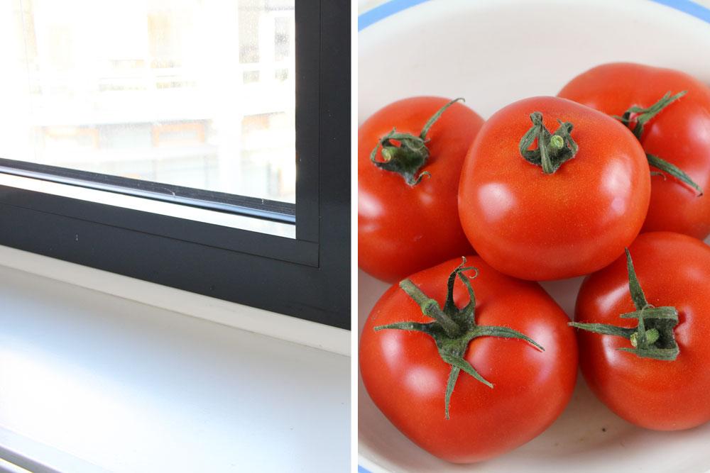 Tomaten auf Fensterbank nachreifen lassen