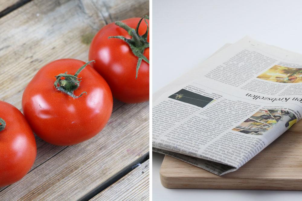 Tomaten zum Nachreifen in Zeitungspapier wickeln