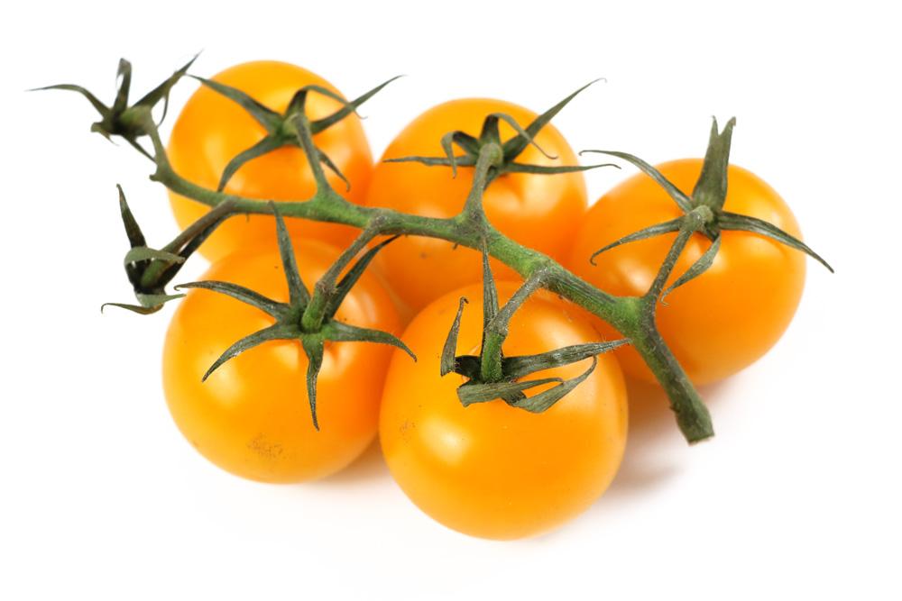 Sungold Cherrytomate
